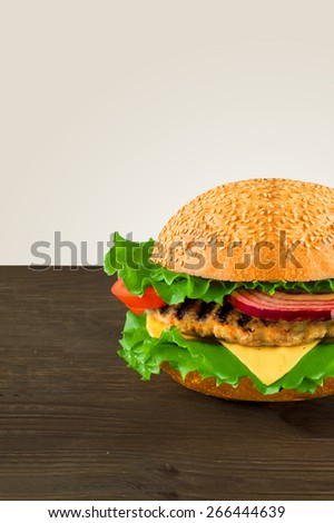 Juicy and fragrant hamburger with fries homemade - stock photo