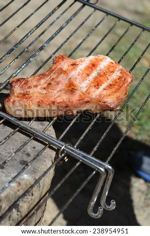 Juicy grilled meats