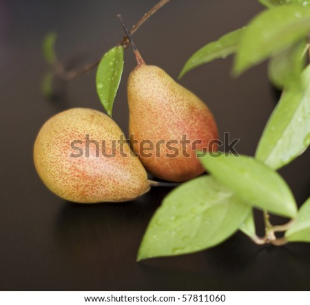 Juicy pears with green leaves