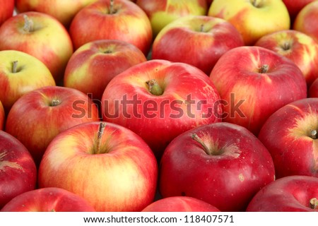 juicy red apples, close up