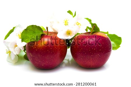 Juicy red apples with blossom isolated on a white background - stock photo