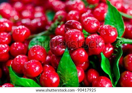 Juicy red cherries in a basket. - stock photo