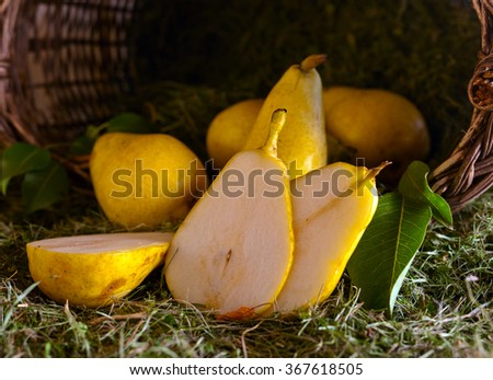 Juicy ripe pears in old basket with hay - stock photo