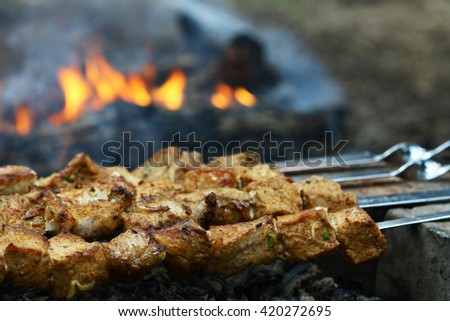 Juicy slices of meat on fire (shish kebab) - stock photo