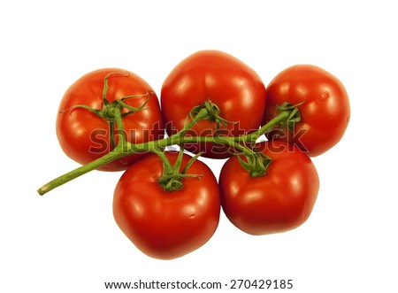 Juicy Vine ripe Tomatoes on a white background - stock photo