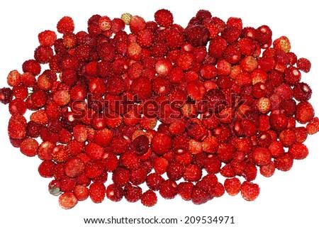 Juicy Wild strawberry heap on white background                                - stock photo