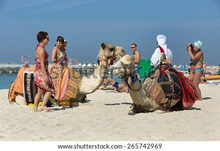 JUMEIRAH BEACH,UNITED ARAB EMIRATES-DECEMBER 6, 2013:People and camels on Jumeirah beach,Dubai,United Arab Emirates