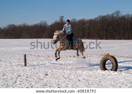 Jumping horse and rider - stock photo