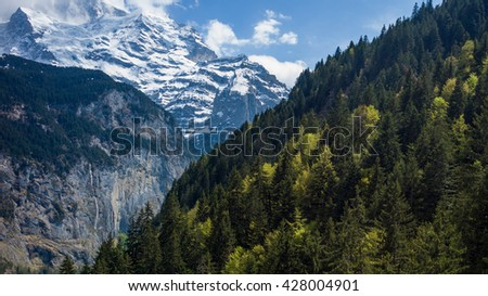 Jungfrau /  Lauterbrunnen Valley / Murren / Switzerland - stock photo
