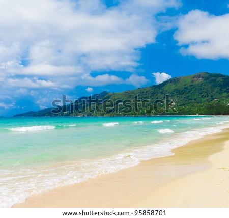 Jungle Bay Summer - stock photo