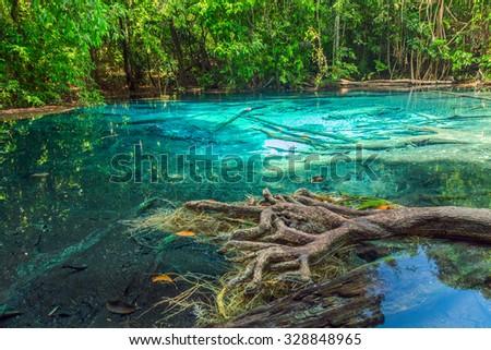 jungle Blue Pool Lagoon in Krabi, Sra Morakot, Thailand - stock photo
