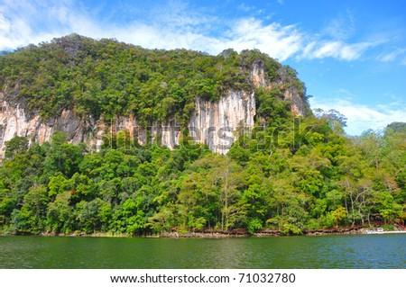 jungle coast - stock photo