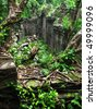 Jungle eating the amazing temple of Beng Mealea (12th century), near Angkor Wat (Siem Reap, Cambodia) - stock photo