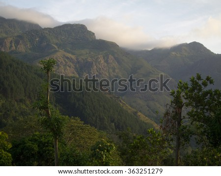 Jungle mountains of Sri Lanka - stock photo
