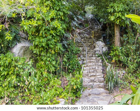 Jungle Staircase - stock photo