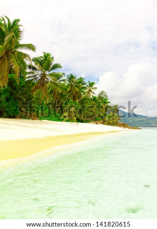 Jungle Tranquility Summertime - stock photo