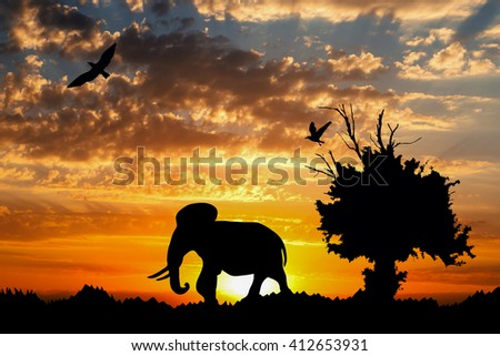Jungle with old tree, birds and elephant on golden cloudy sunset background - stock photo