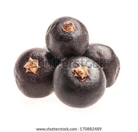 Juniper berries isolated on white background, closeup, macro - stock photo
