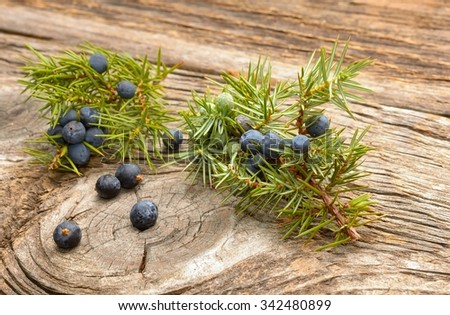 Juniper berries on wooden background