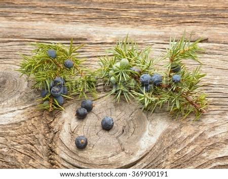 Juniper berries on wooden background - stock photo