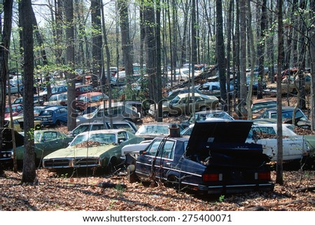 Junk cars in a forest in Virginia