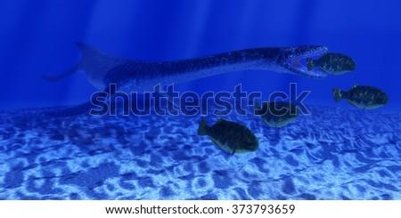 Jurassic Plesiosaurus Ocean - A Plesiosaurus marine reptile sneaks up behind a school of Dapedius fish as it goes in for the attack. - stock photo