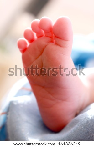 just born baby feet in natural light - stock photo