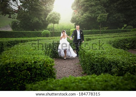 Just married bride and groom running at garden maze - stock photo