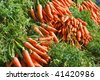 Just picked fresh organic carrots in a market - stock photo
