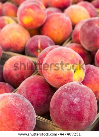 Just picked fresh peaches in basket at farm market. - stock photo