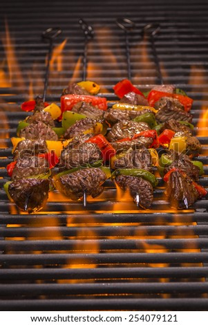 Kabobs on a Hot Flaming Barbecue Grill - stock photo