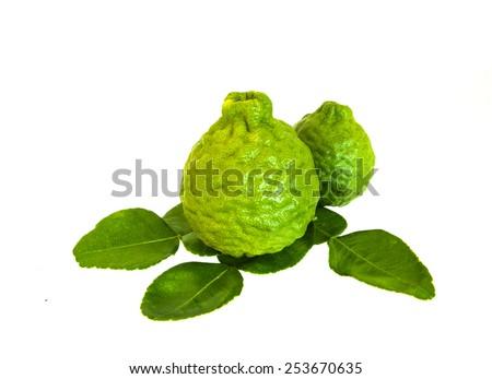Kaffir and leaf closeup shot on white isolated. - stock photo