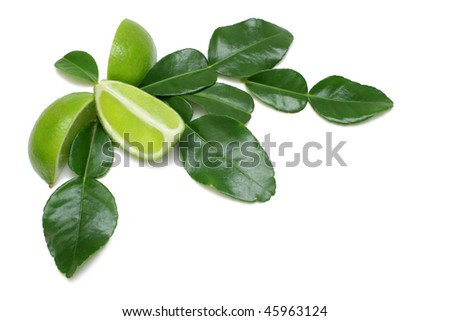 Kaffir Lime wedges with leaves arranged on pure white background - stock photo