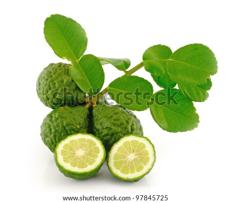 Kaffir Lime with leaves - stock photo