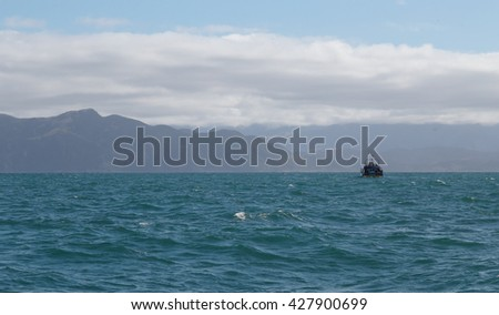 Kaikoura, New Zealand  - April 8, 2016 : The Boat Travel Tourtist for Whale Watch in New Zealand