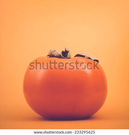 Kaki persimmon on orange background, retro toned - stock photo