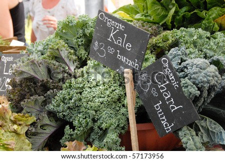 Kale at the Saturday Market in Boise, Idaho - stock photo