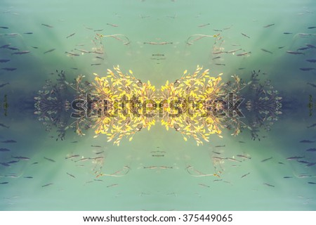 Kaleidoscopic pattern from sunny fishes under water and water plants - stock photo