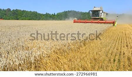 Kalush, Ukraine - August 11: Modern  combine harvesting grain in the field near the town Kalush, Western Ukraine on August 11, 2014  - stock photo
