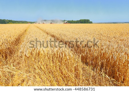 Kalush, Ukraine - August 7: Modern  combine harvesting grain in the field near the town Kalush, Western Ukraine August 7, 2015