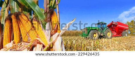 Kalush, Ukraine - OCTOBER 14: Modern John Deere tractor with a trailer to transport the grain to harvest corn  in the field near the town Kalush, Western Ukraine October 14, 2014 - stock photo