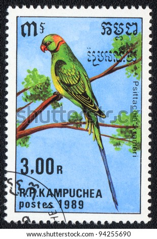KAMPUCHEA - CIRCA 1989: A stamp printed in KAMPUCHEA  shows a Rose-ringed Parakeet (Psittacula krameri), from series Breeds of parrots, circa 1989