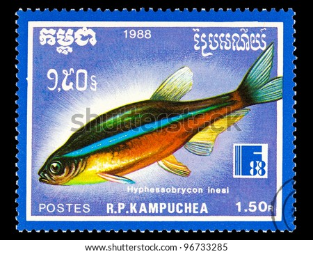 KAMPUCHEA - CIRCA 1988: A stamp printed in Kampuchea shows Neon tetra - Hyphessobrycon innesi, circa 1988 - stock photo