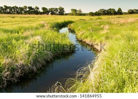 Kansas pastureland plants and flowers; winding creek - stock photo