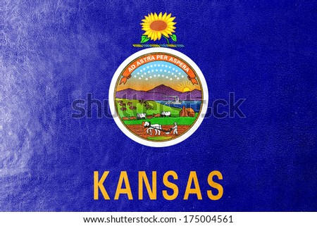 Kansas State Flag painted on leather texture - stock photo