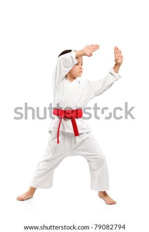Karate boy exercising isolated against white background - stock photo