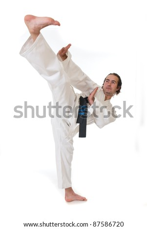 Karate fighter on white background - stock photo