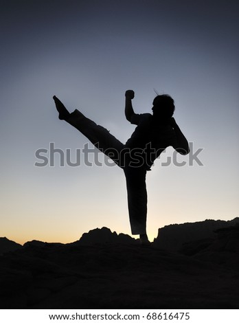 Karate fighter silhouette, young man doing an exercise of fighting sport, sunset, outdoor - stock photo