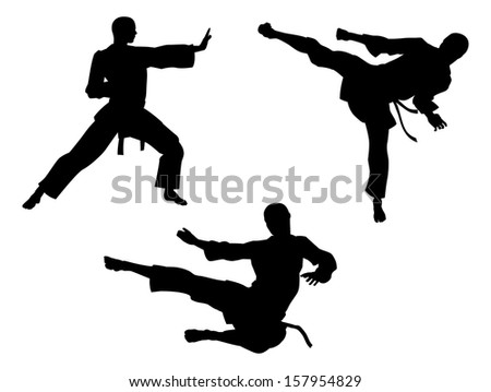 Karate martial art silhouettes of men in various karate or other martial art poses, including high kick and flying kick  - stock photo