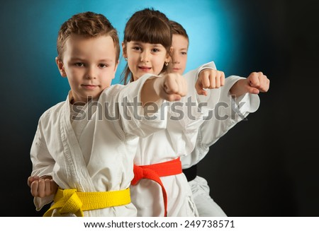Karate martial Arts - stock photo